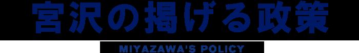 宮沢の掲げる政策 MIYAZAWA'S POLICY